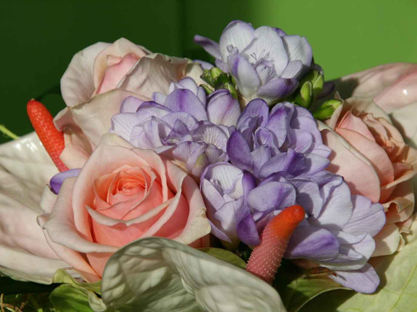 Cvetličarna
