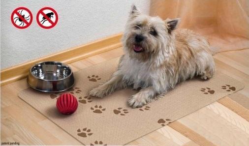 Ležišča za psa