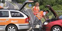 Servisiranje in asistenca