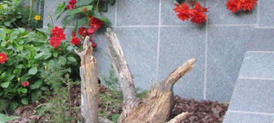Kamen porfido, naravni kamen, polaganje naravnega kamna