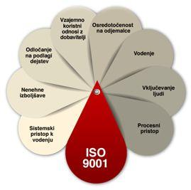 iSO 9001 opis