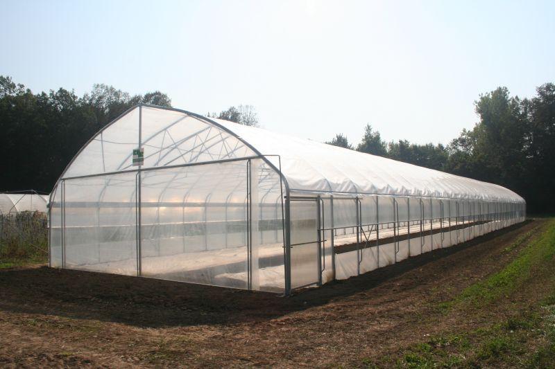 Kako ogrevati rastlinjak pozimi