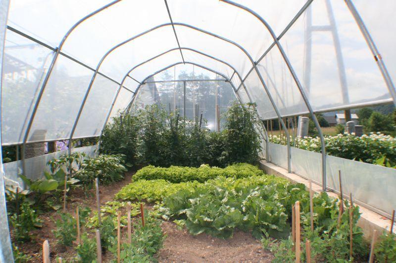 topla greda ali rastlinjak s folijo za paradižnik