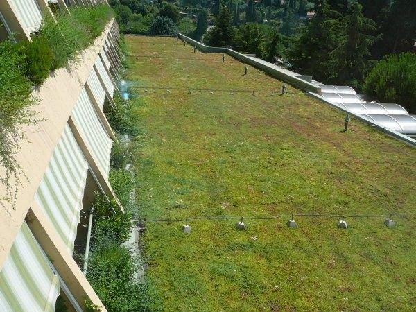 Zelena streha debelina