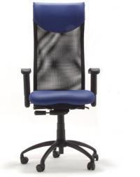 Ergonomsi pisarniški stoli