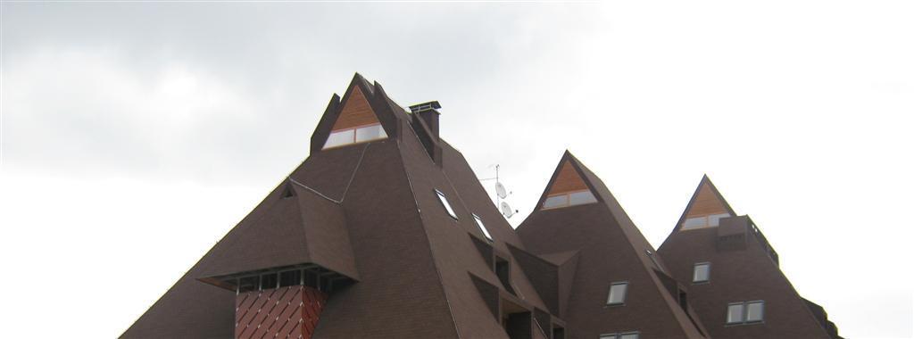 Poševna streha
