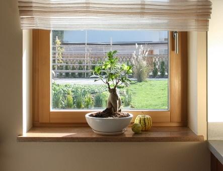 Okna les aluminij spadajo med najbolj odporna okna na okoljske vplive