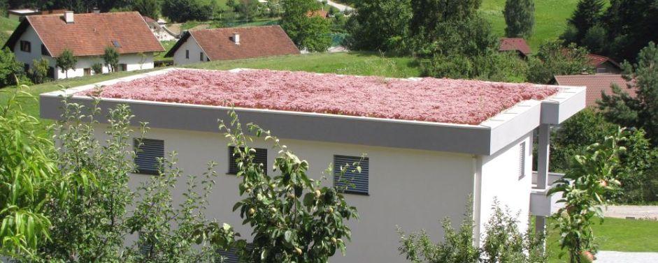 Zelene strehe trava