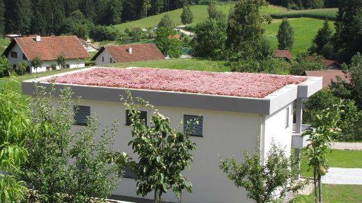 zelena streha nadstrešek