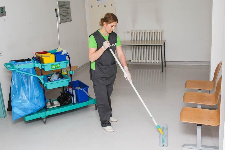 Globinsko čiščenje preprog na domu