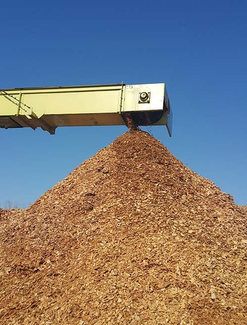 biomasa TISA