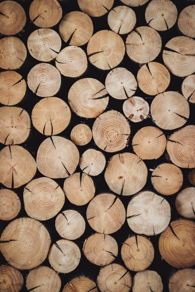 odkup lesa