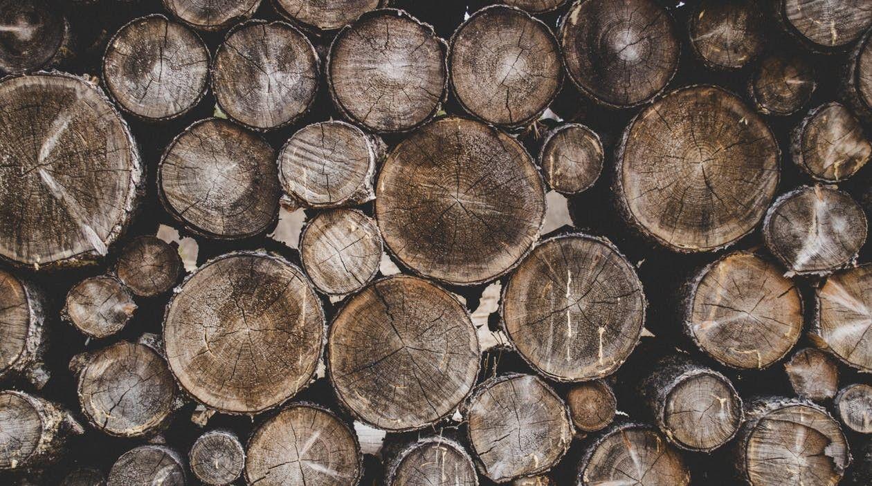 brezovanje dreves
