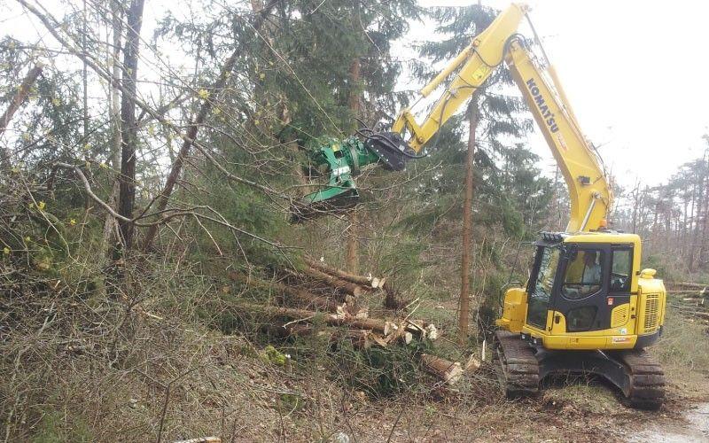 Posek in obrezovanje drevja