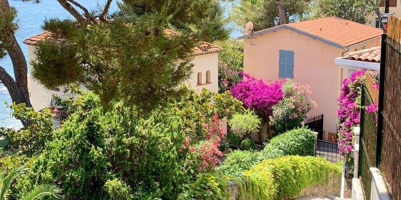Ureditev vrta in okolice doma