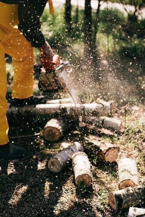 Les za biomaso