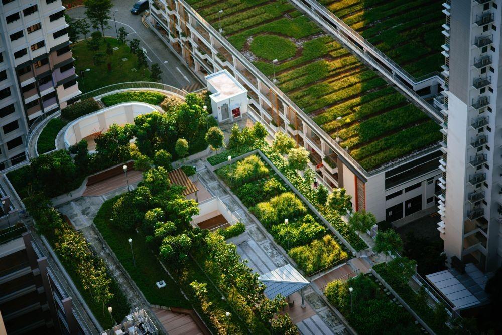 Zelene površine izdelamo na strehi bloka, stolpnice ali hiše