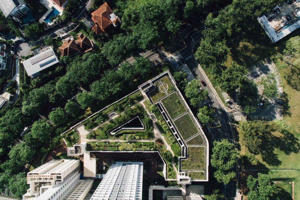 Zelene površine na strehi objekta pripomorejo k manjšemu segrevanju okolice
