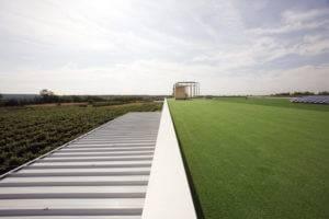 Izdelava in sanacija ravne - zelene strehe