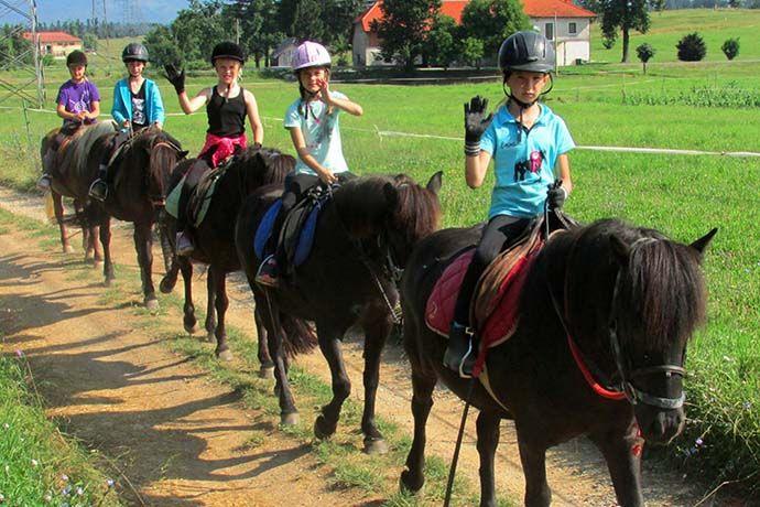 Šola jahanja na Primorskem