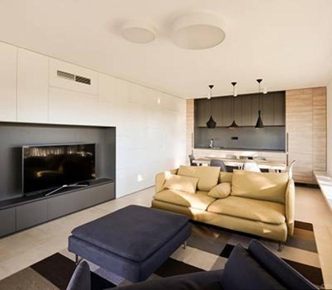 Kuhinja in dnevna soba