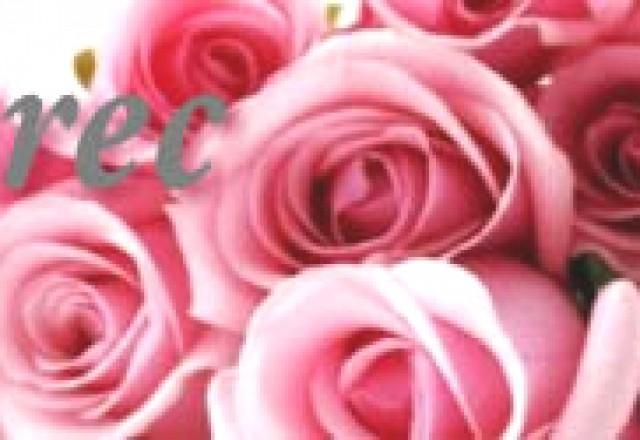 8. marec, mednarodni dan žena