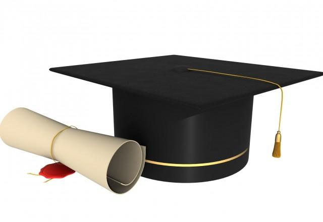 Diplomska naloga