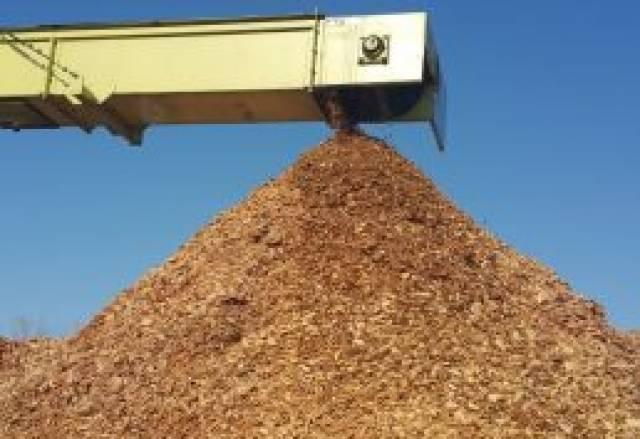 Predelava biomase